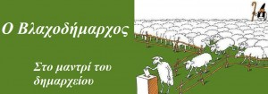 sheep-voting2-2